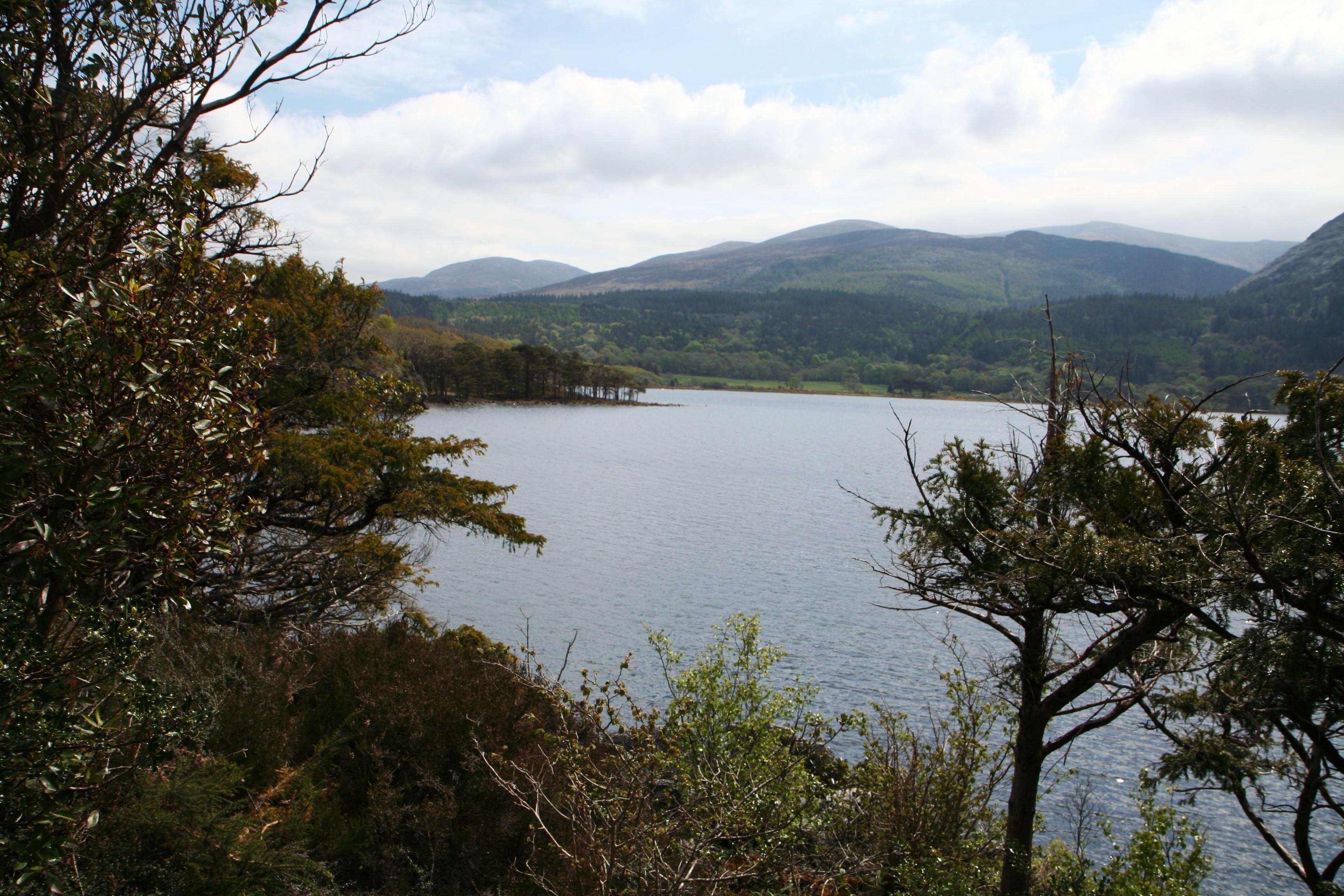 Uitzicht op het meer van Killarney
