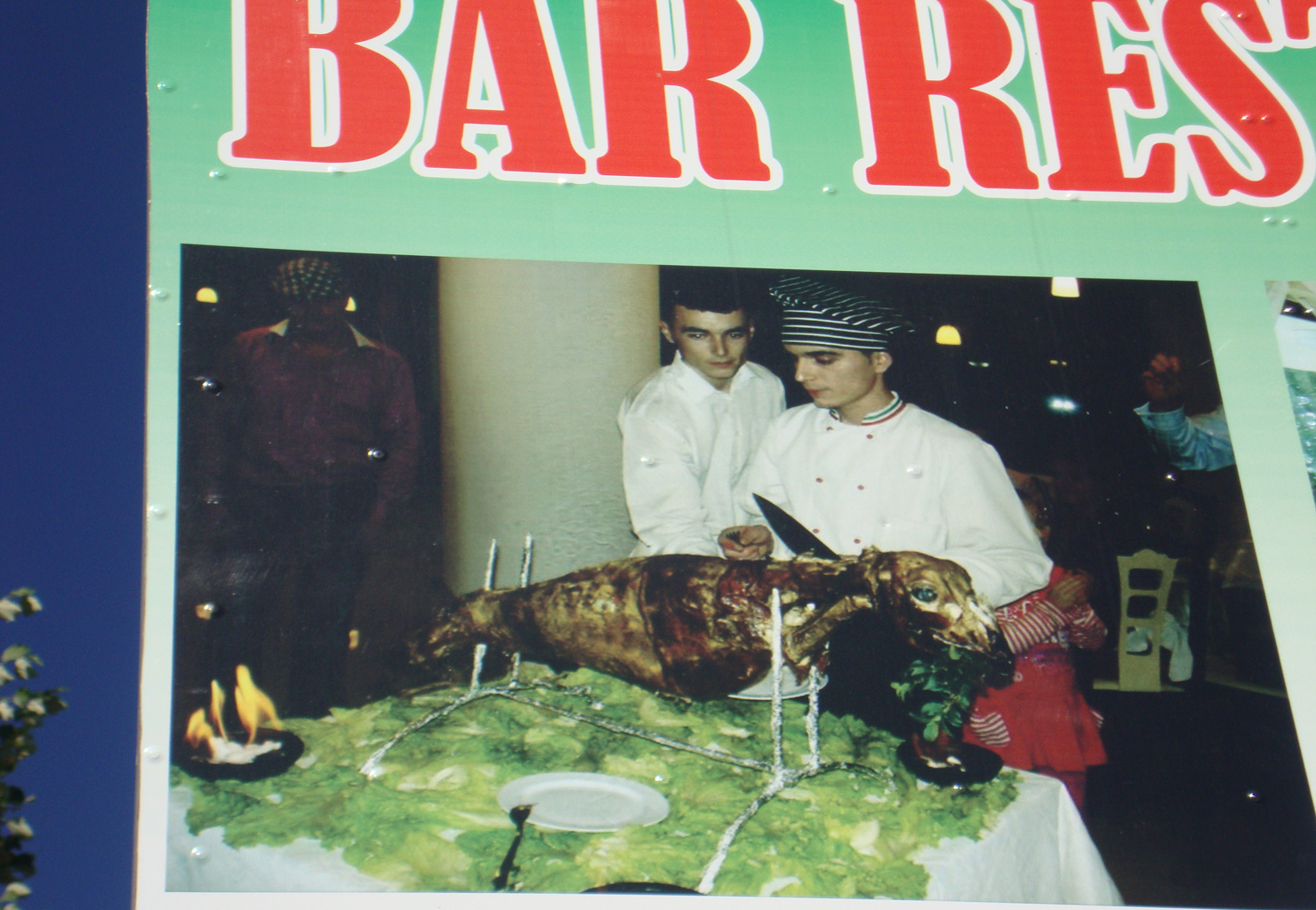 Billboard bij Tirana: zeehond van het spit?