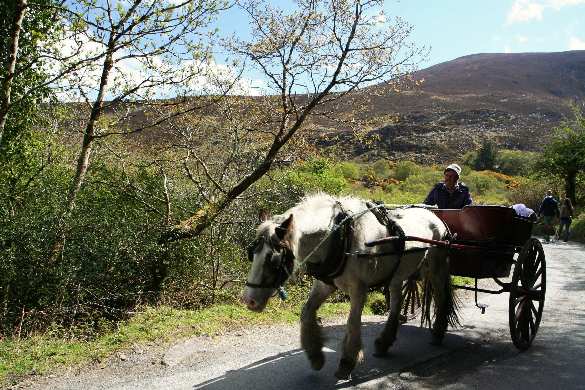 Ouderwets vervoer in Killarney