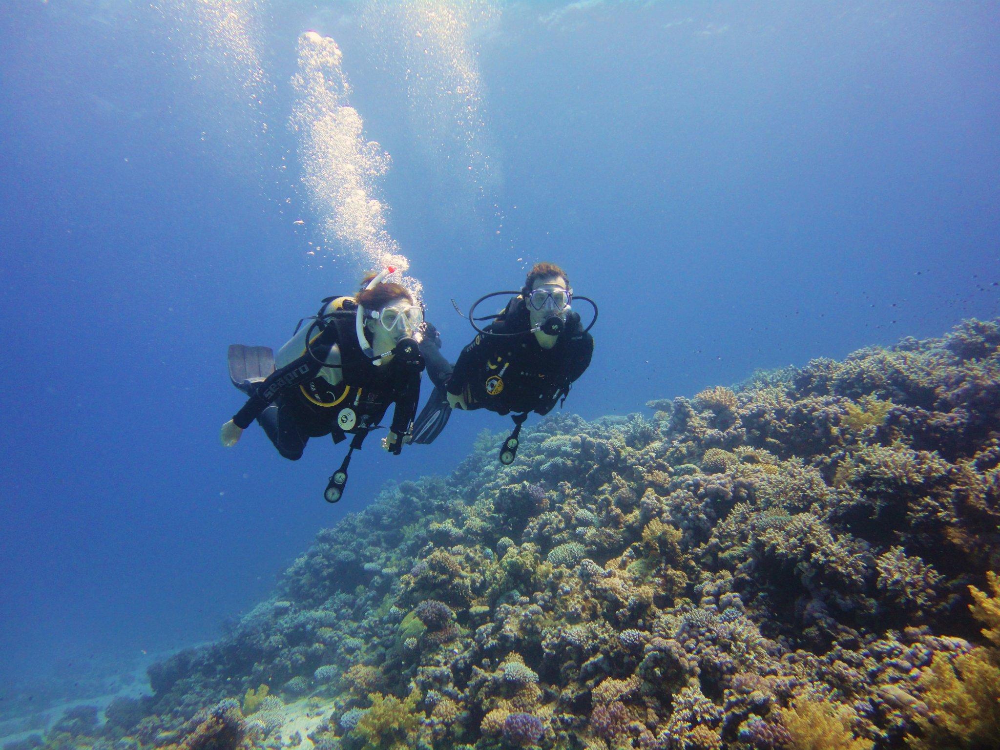 Gezellig samen duiken in Dahab