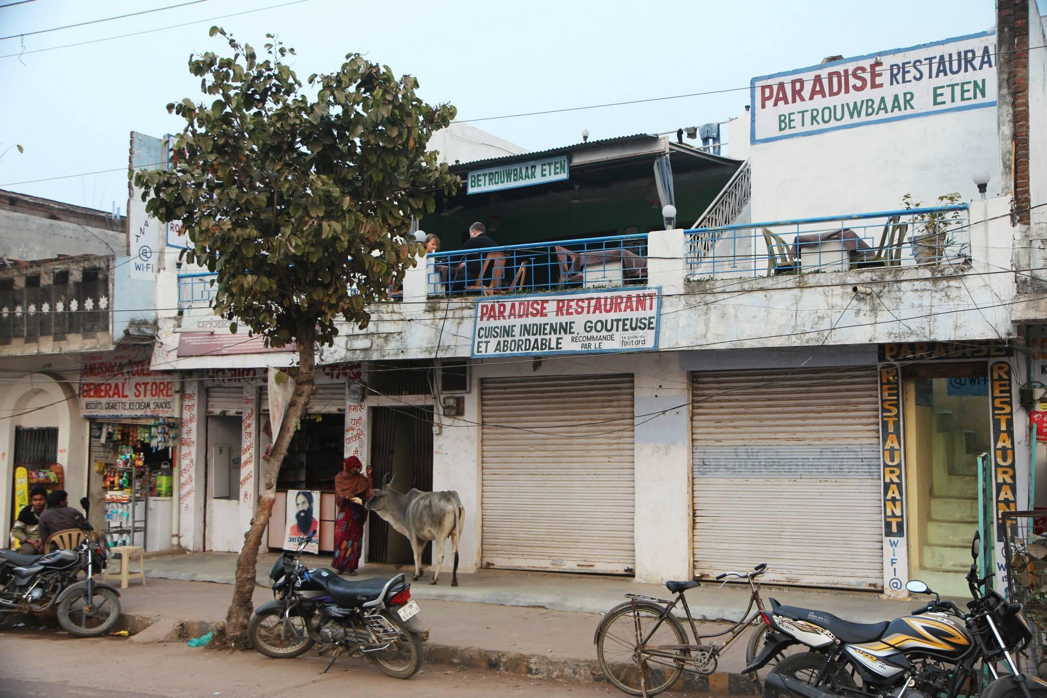 'Betrouwbaar eten' in Khajuraho, zou het echt?