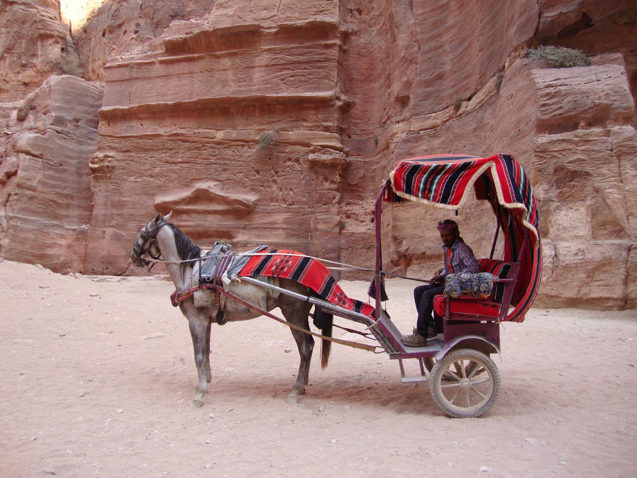 Een paard en wagen wachten op toeristen
