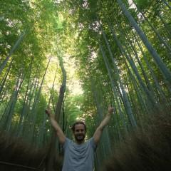 Foto's: Drie weken rondreizen door Japan