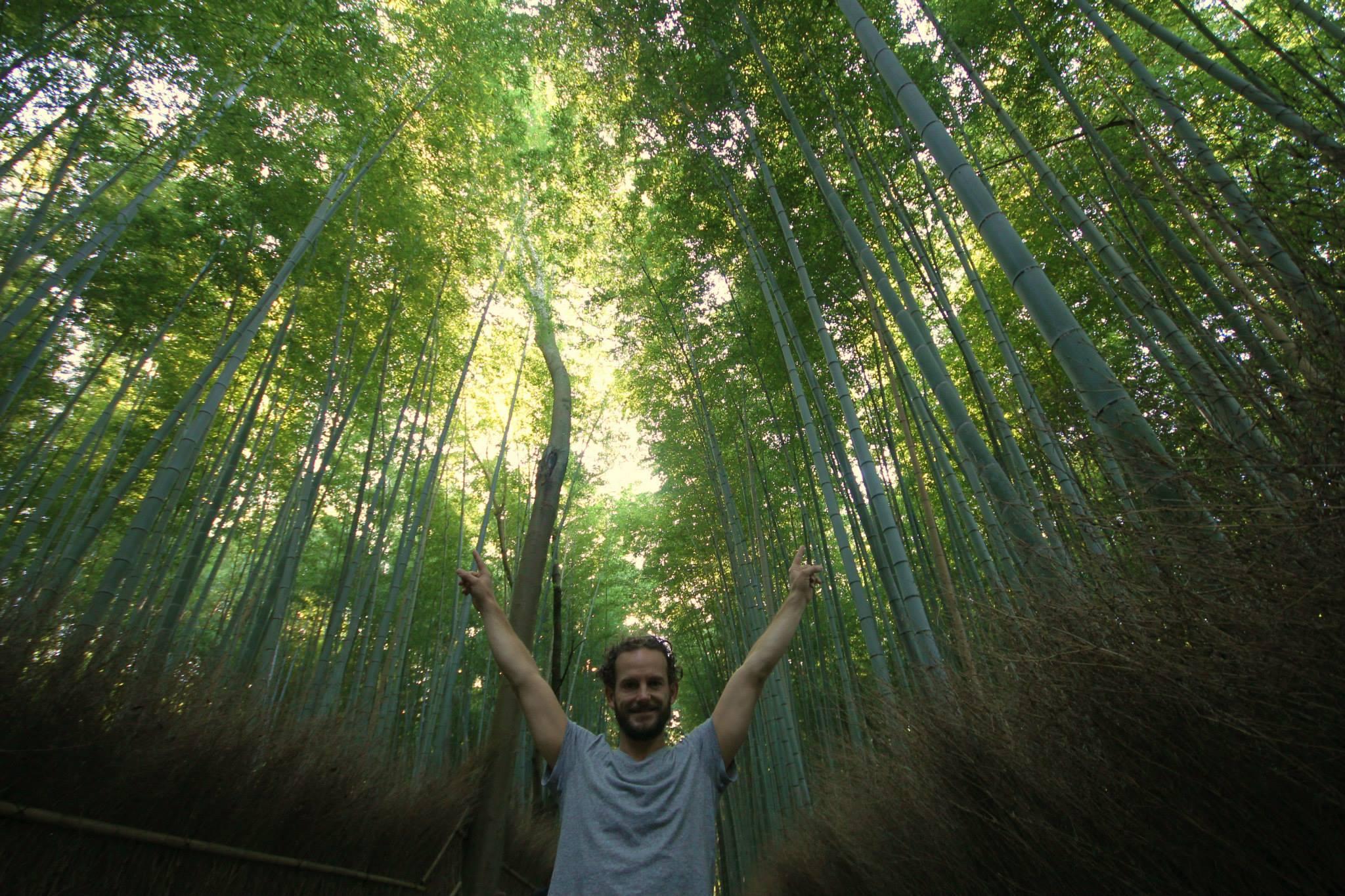 Arashiyama Bamboo Grove in Kyoto is een prachtige plek