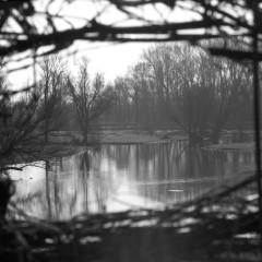 Doorkijkje bij een hek naast een waterplas